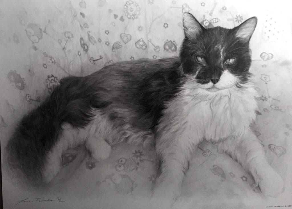 retratos-por-encargo-136-1-1024x734