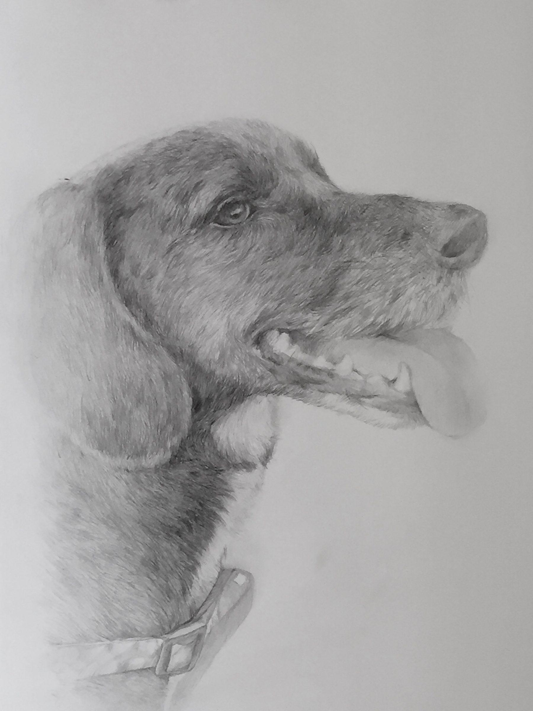 retratos-por-encargo-40-e1488877961142