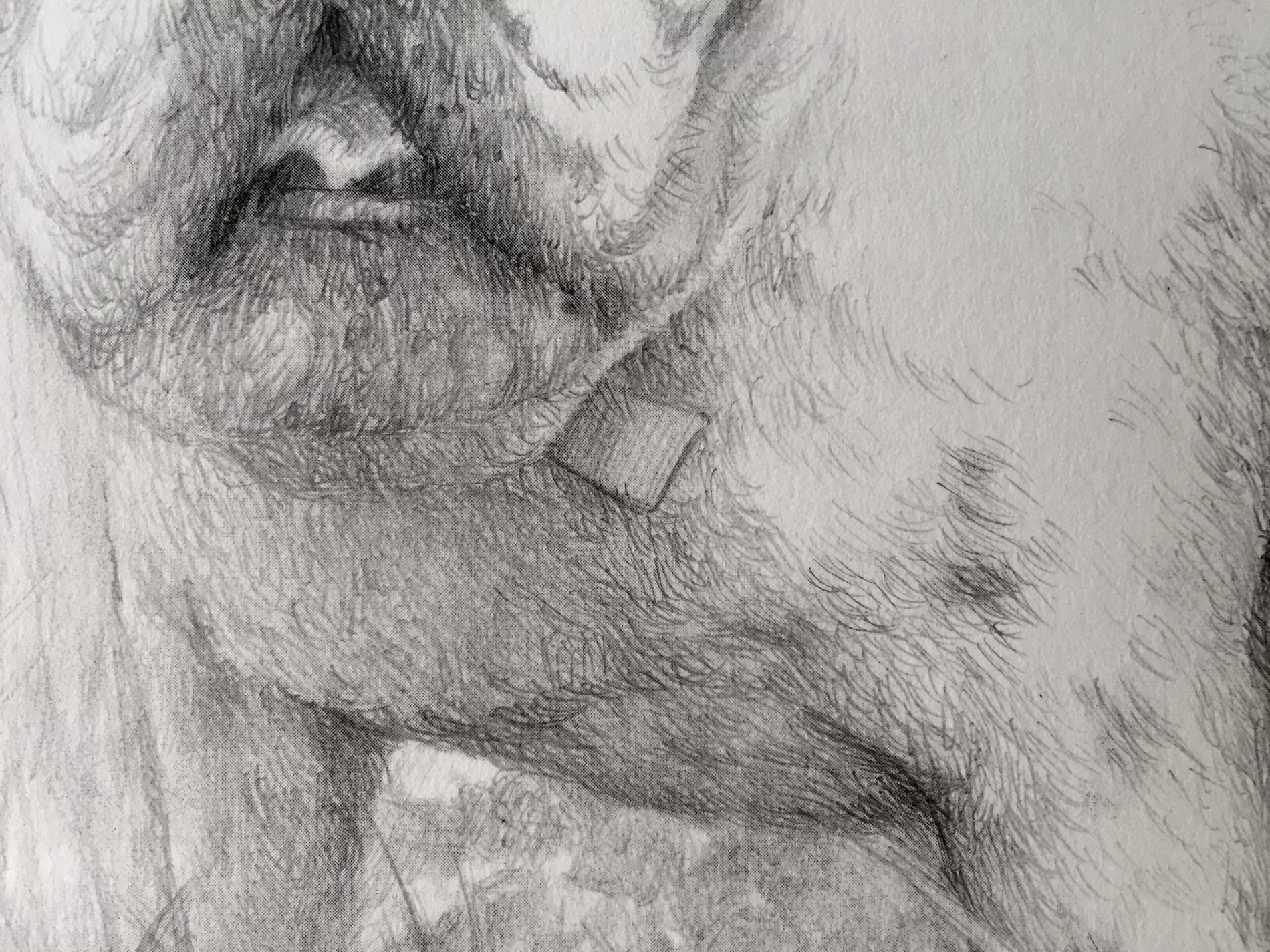 retratos-por-encargo-55-detallle-e1488877412839