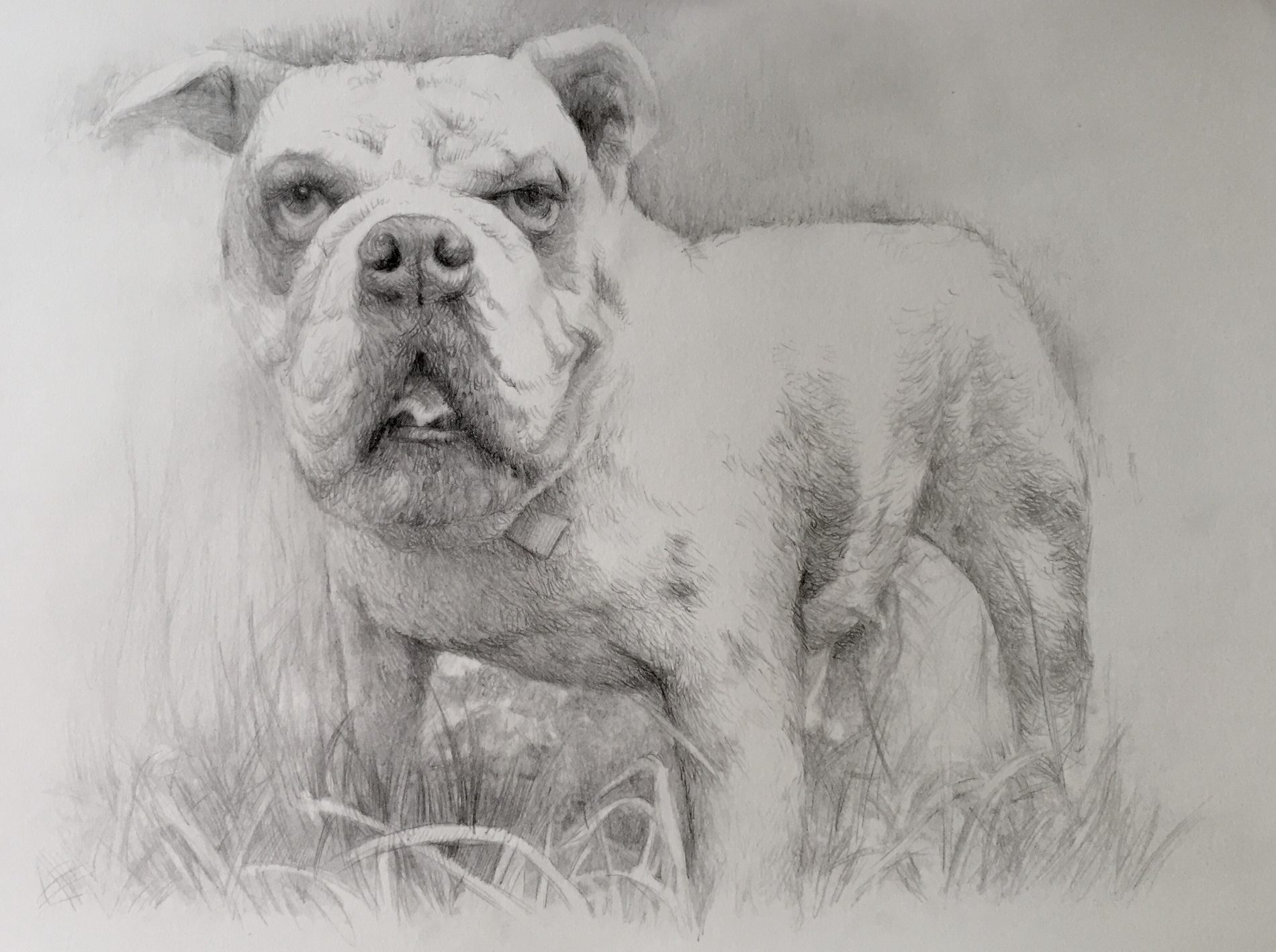 retratos-por-encargo-55-e1488877429951