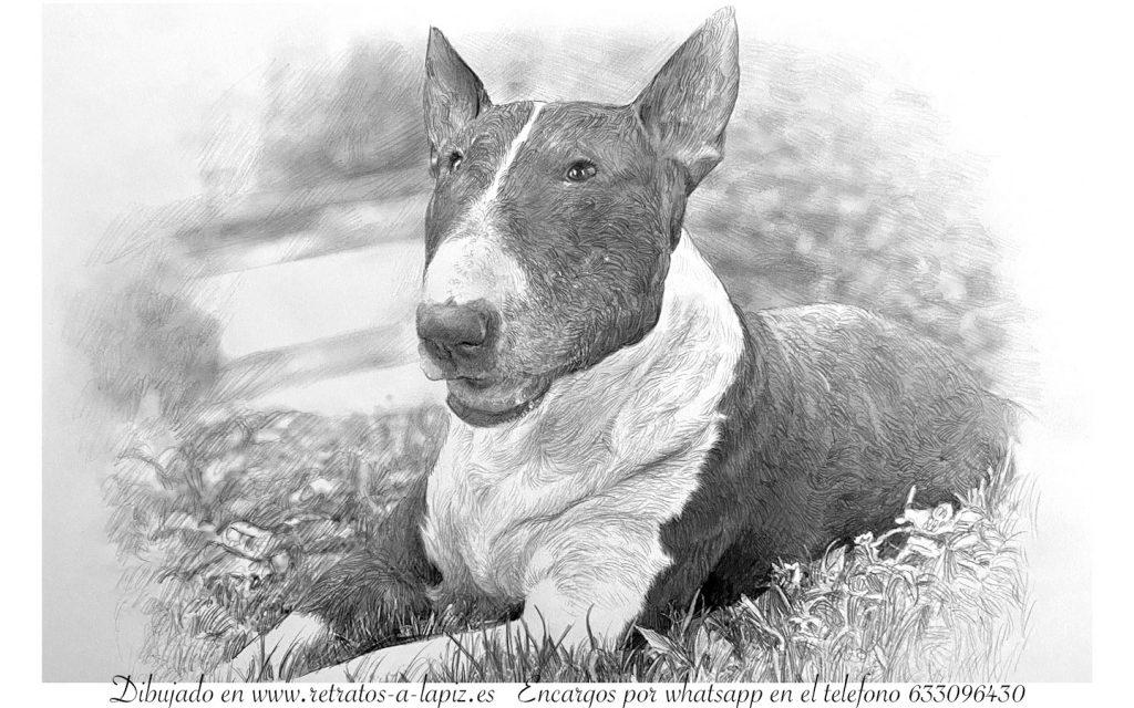 cuadro perro