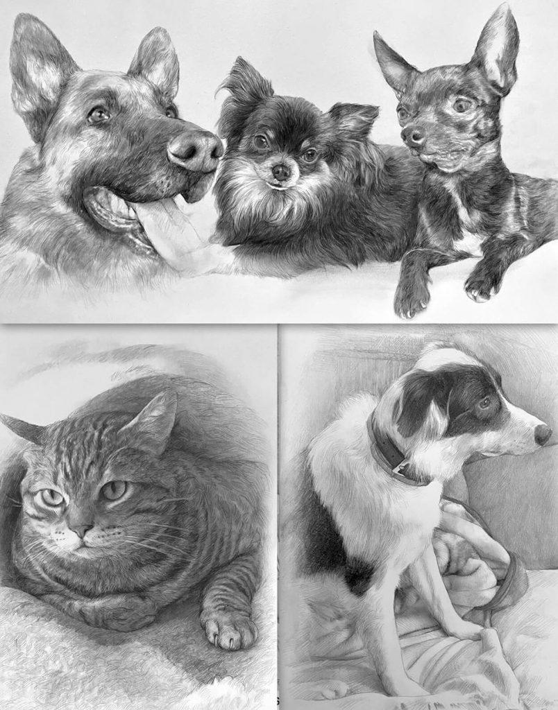 Retratos de mascotas a lápiz